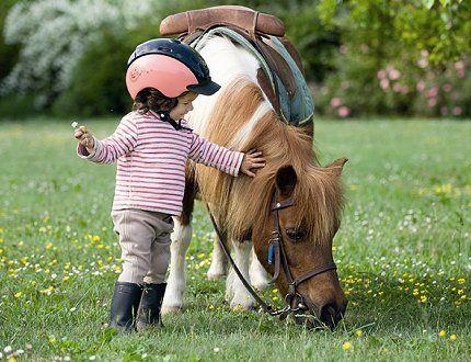 poney baby